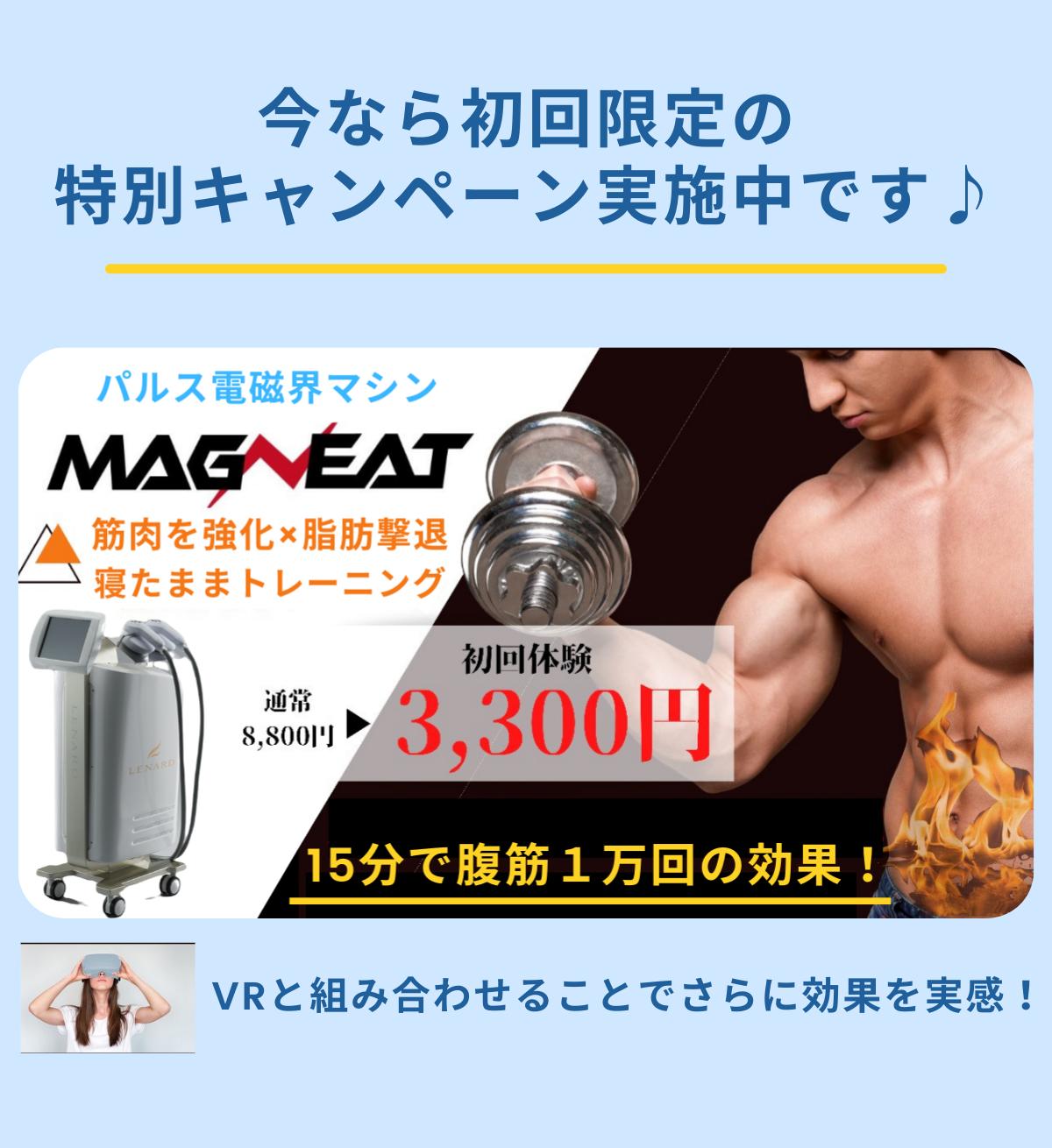 今なら初回限定の特別キャンペーン実施中です!パルス電磁界マシン「マグニート」!筋肉を強化×脂肪撃退!寝たままトレーニング!15分で腹筋1万回の効果!VRと組み合わせることでさらに効果を実感!